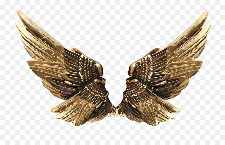 Золотое крыло картинка