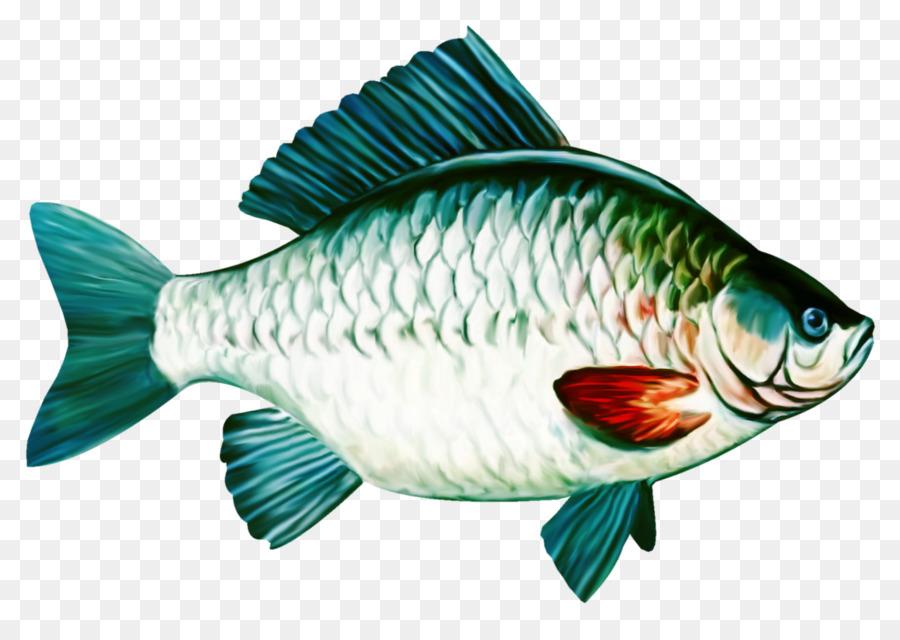 Картинки рыбки для карп