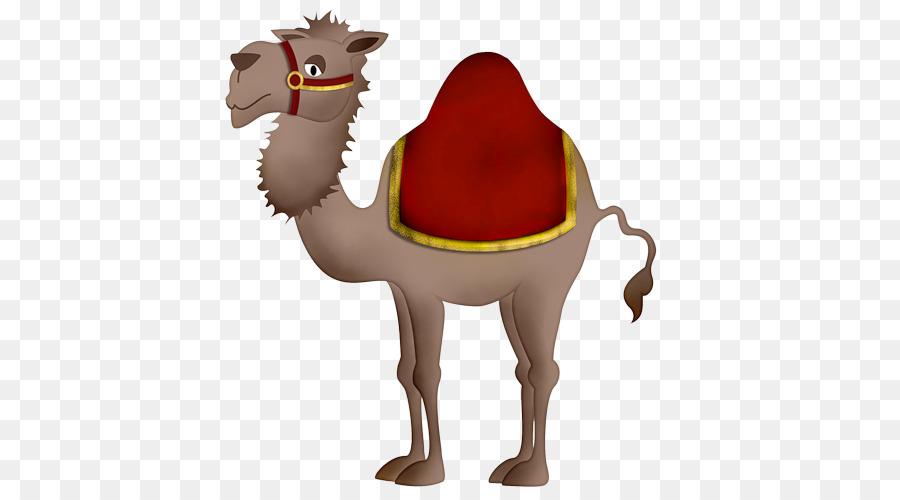 Картинки верблюд для детей на белом фоне
