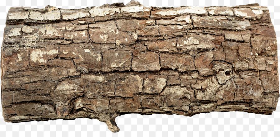 Картинка кора деревьев на прозрачном фоне