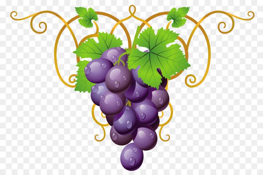 показывает, виноград картинки уголки модели горной обуви