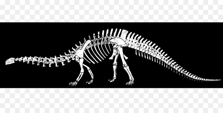 Скелет бронтозавра картинки