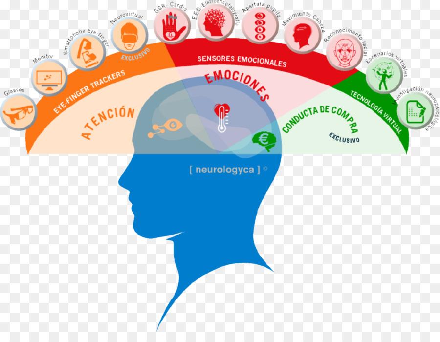 нейромаркетинг, неврология, внимание