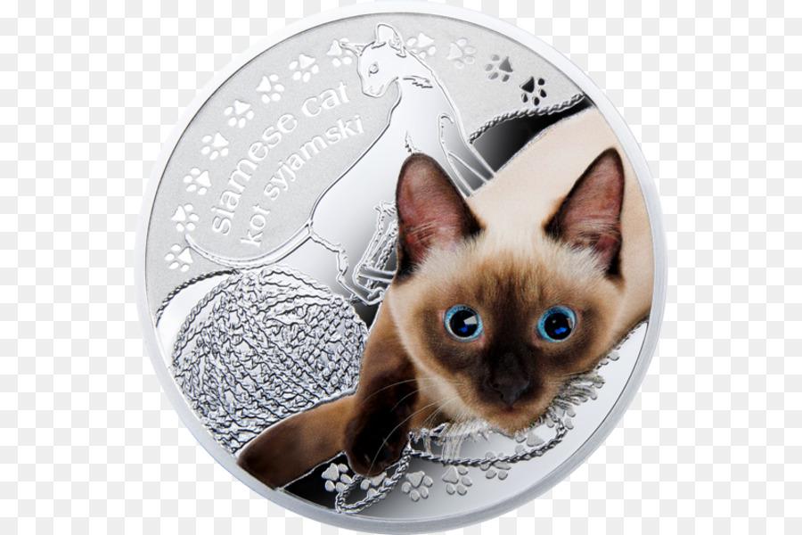 картинка награда кошки плитки под