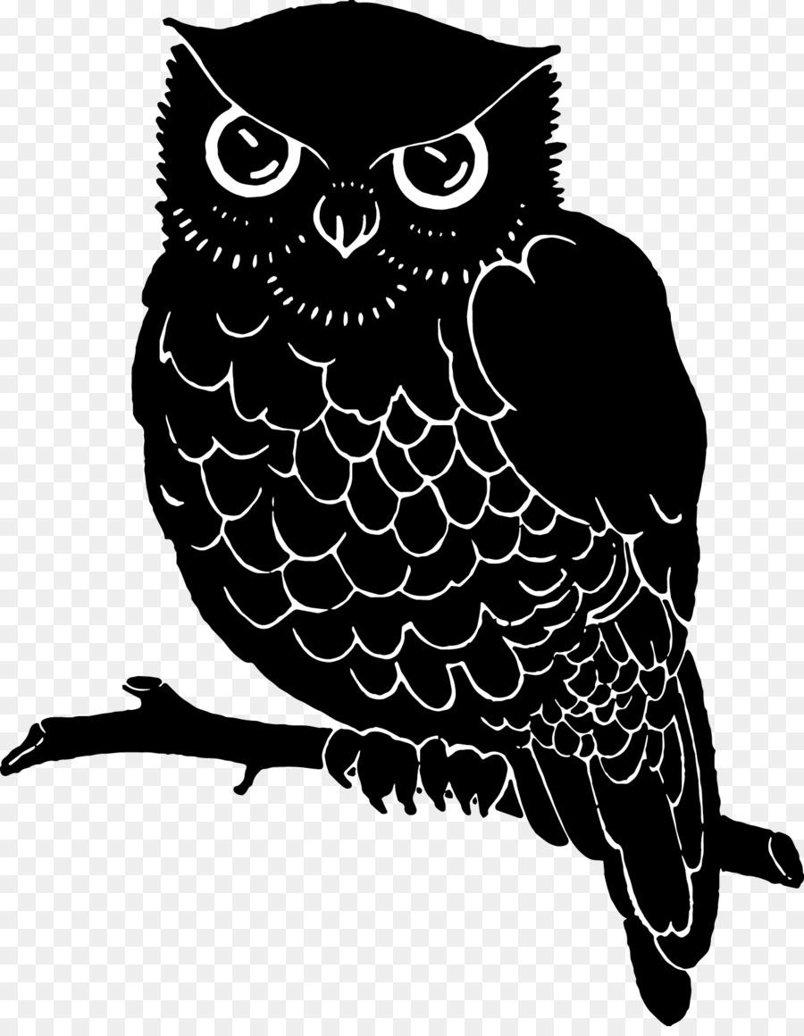 Картинки совы черно белая