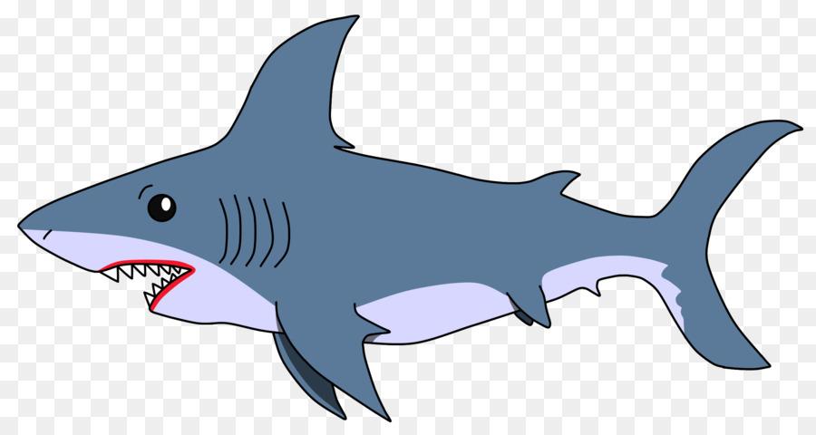 одноименного цветные картинки акулы ассортименте