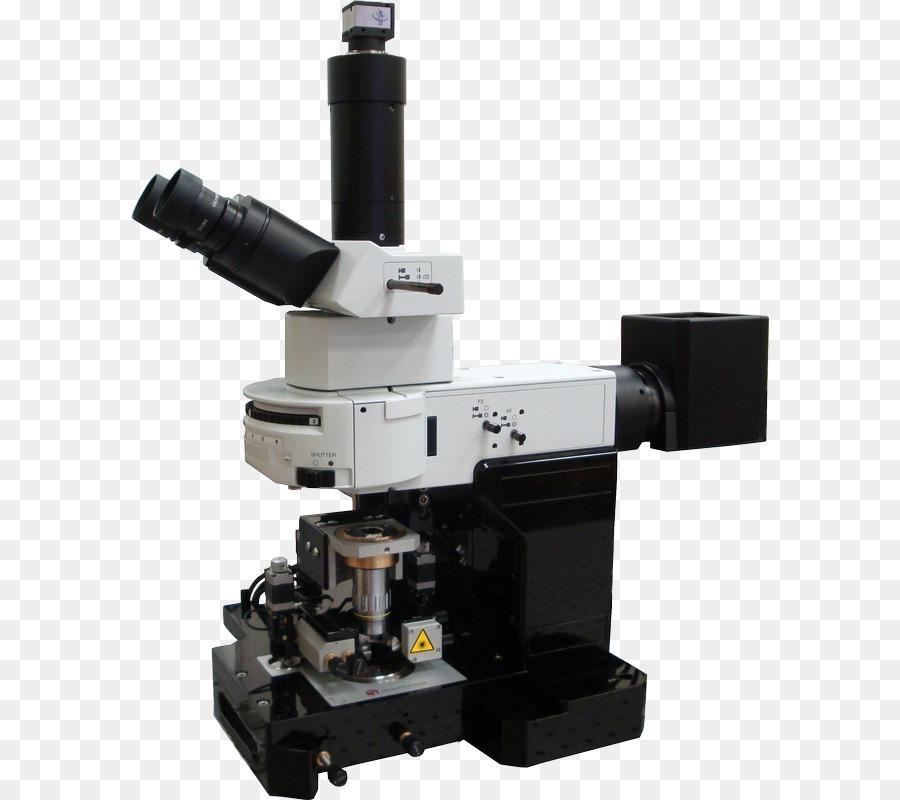 картинки сканирующей электронной микроскопии