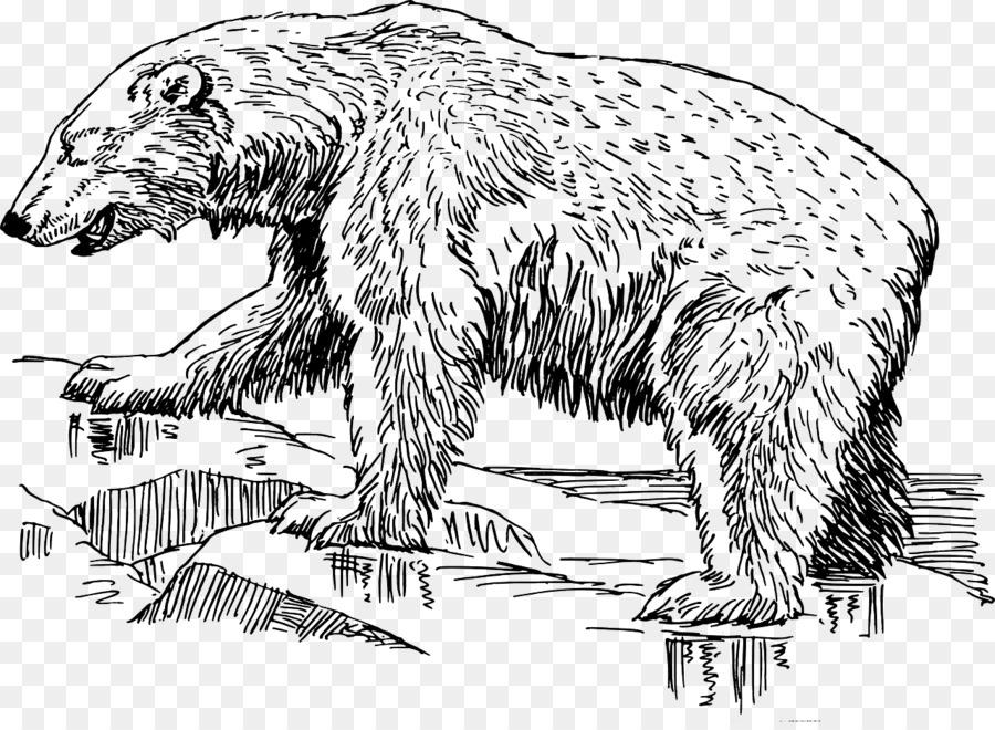 Черно белый рисунок медведицы
