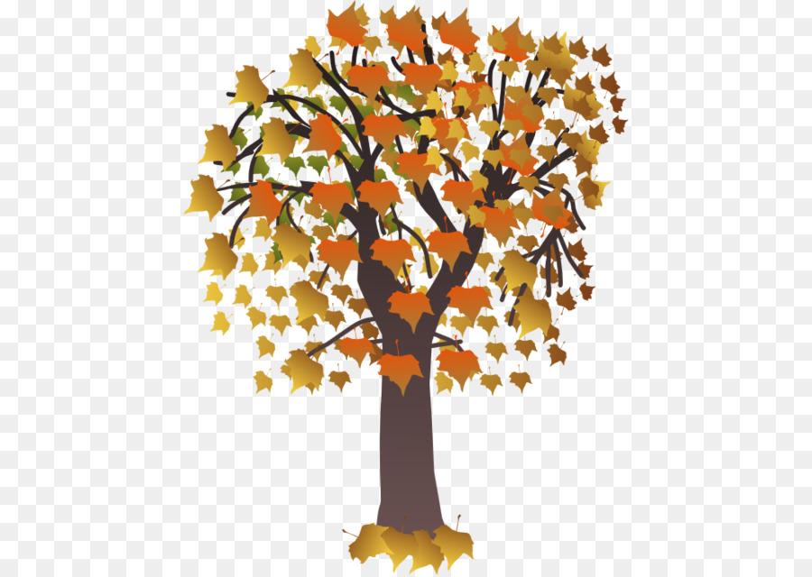 картинка дерева с опавшими листьями спортивного зала