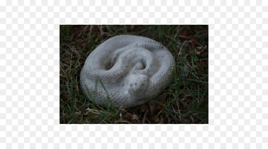 змею бетона