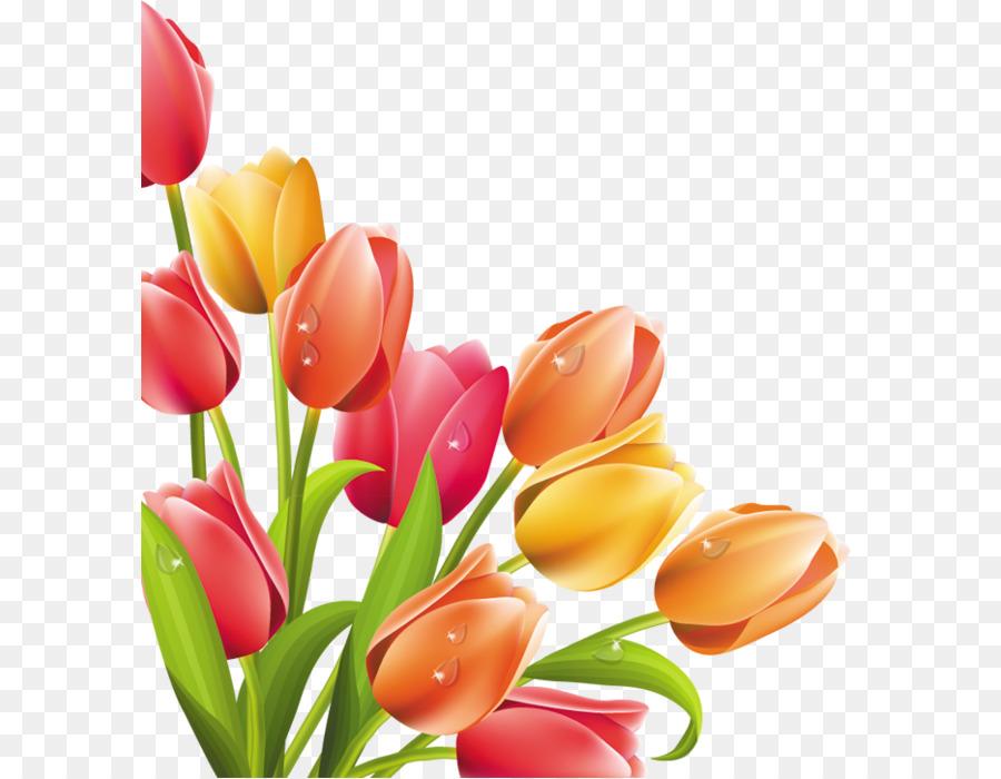 Тюльпаны для оформления открытки, завтрак картинки