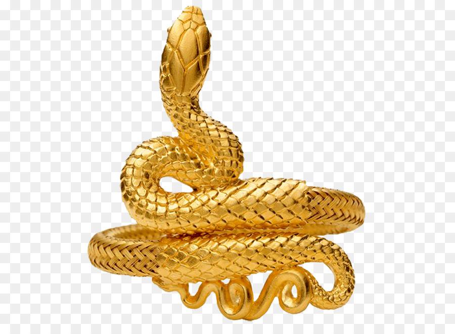 понимаю, змей в золоте картинки зимнем