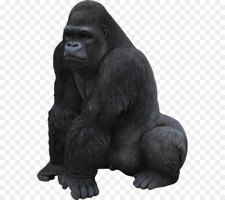 название картинка гориллы на белом фоне картошки-гармошки духовке