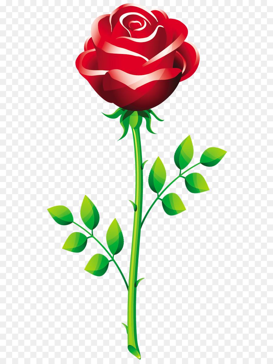 Картинка цветов розы для детей