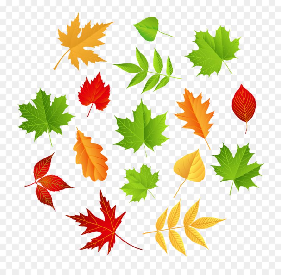 Лет парню, открытки листья деревьев