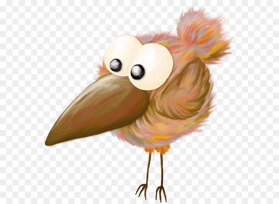 Смешная птица рисунок, днем