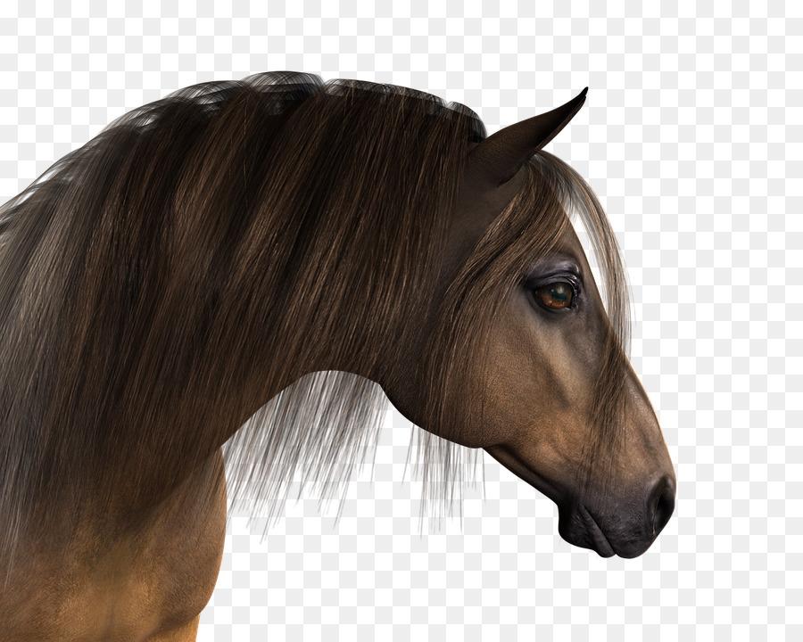 Картинка головы коня для