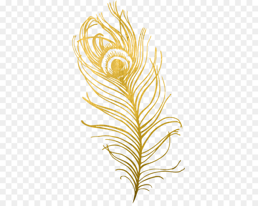 Картинки золотое перышка