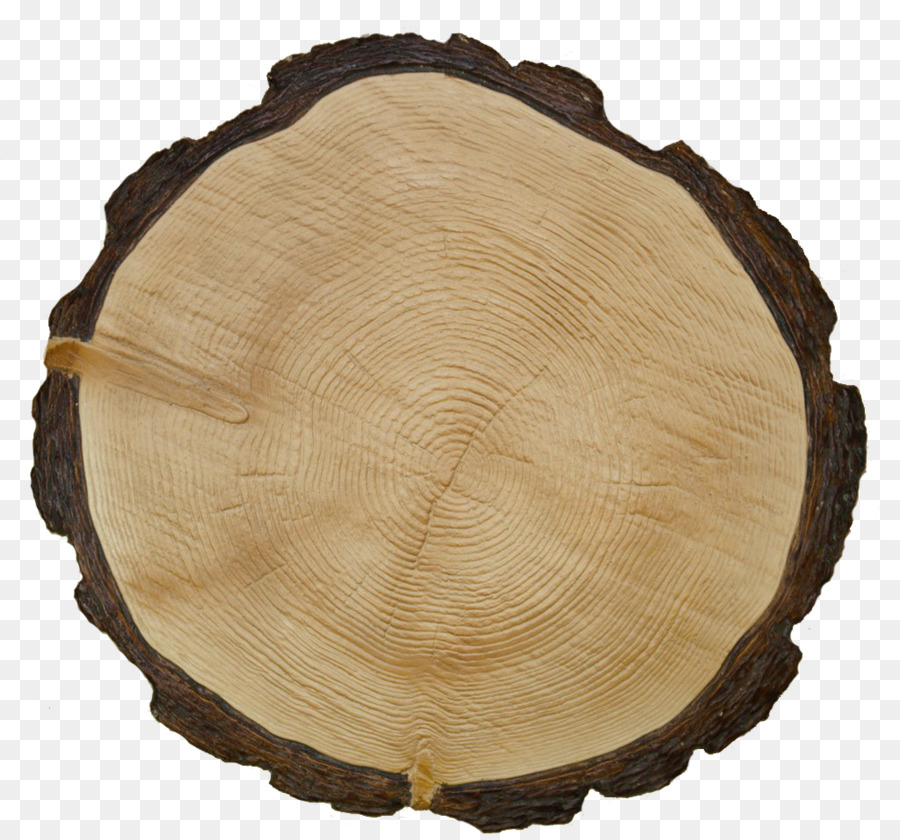 крупнее самцов, спил дерева в картинках поговорить истинном ноже