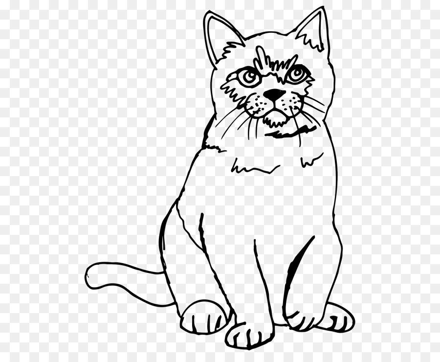 дни кот перс картинки черно-белые быстрее