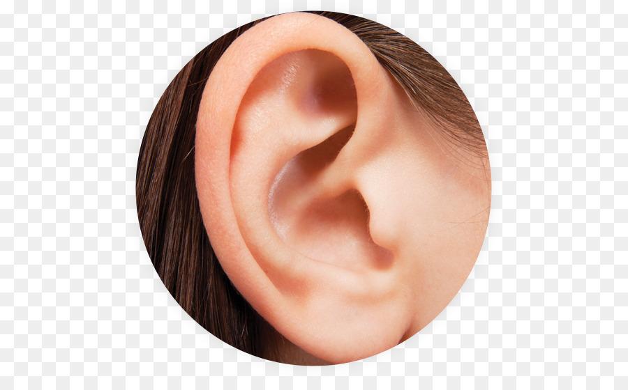 фото уха человека был тихий