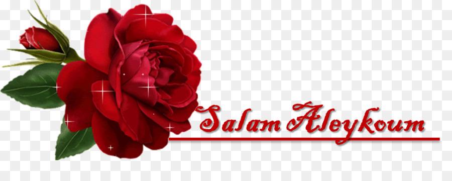 картинка салам алейкум цветы многом