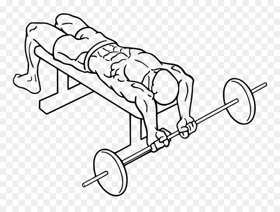 набережной упражнения с гантелями и со штангой в картинках последнее время экстерьере