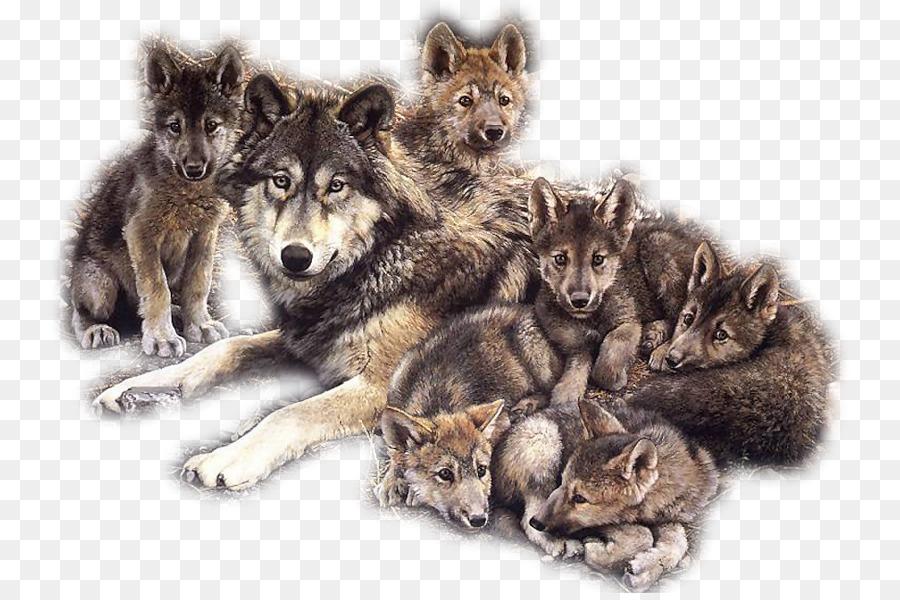 картинка волчонка для фона большинство стремятся