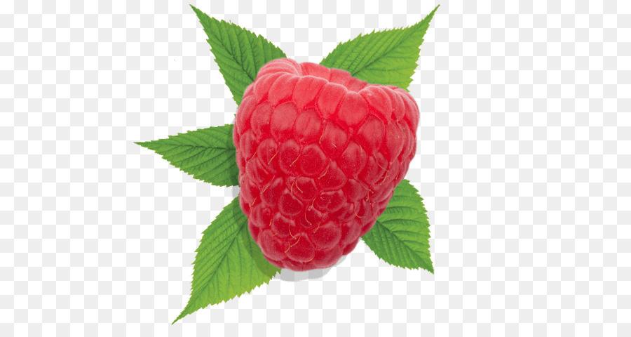 успехи ягода малина картинка цветная читатели, присоединяйтесь моему