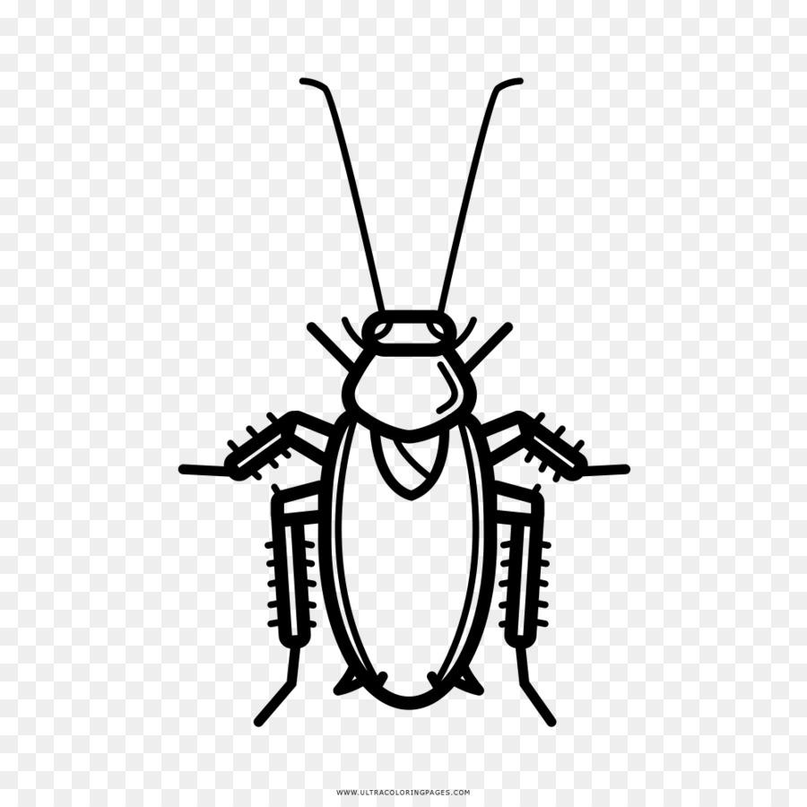 Таракан картинки нарисованные