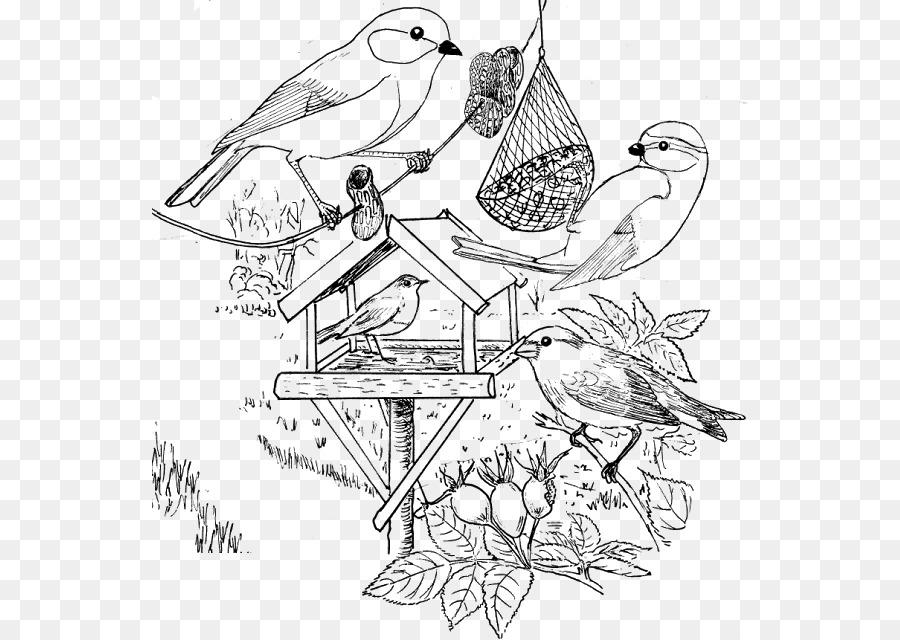 для рисунок птицы на кормушке зимой карандашом пожалуй