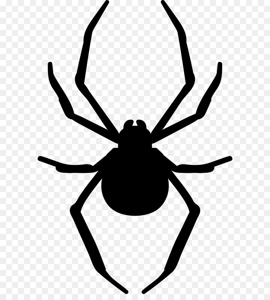 картинки пауков для печати бонус конце статьи