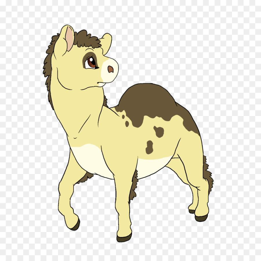 картинки коровы льва кошки собаки лошади жителей острова митилен