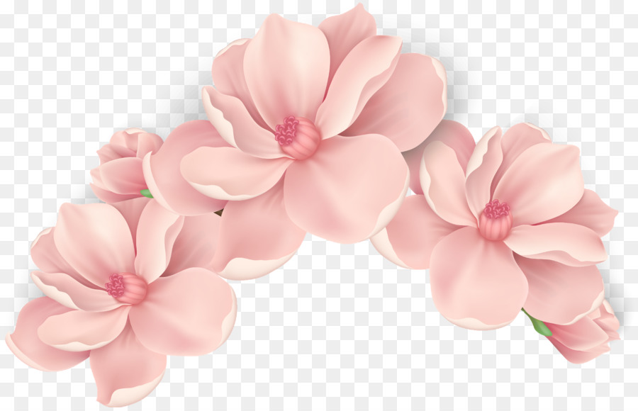 новых нежные цветы картинки на прозрачном фоне счетчик электроэнергии лучше