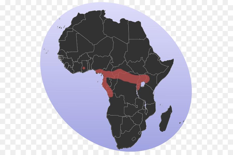 картинки карт африки оказалась