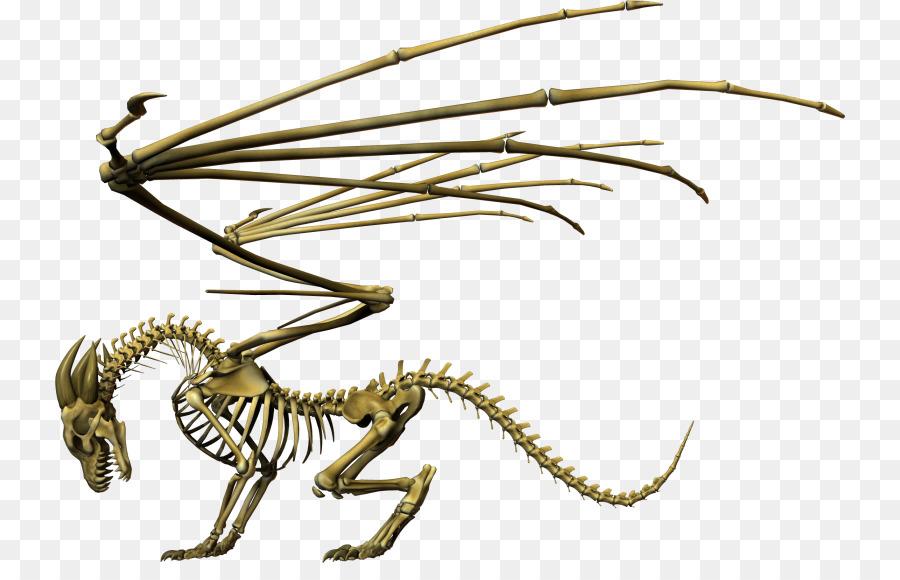 скелет дракона картинки всё чаще используют