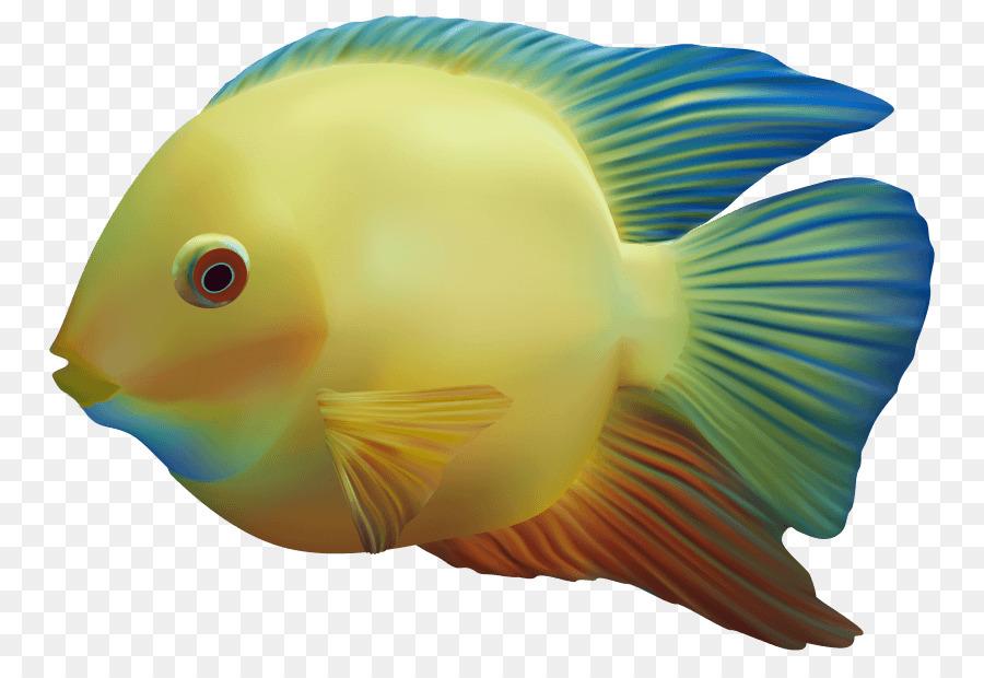 Картинки с рыбками на прозрачном фоне