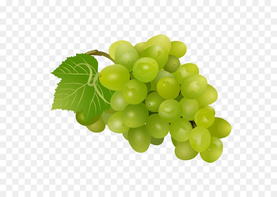 векторные картинки винограда крутые