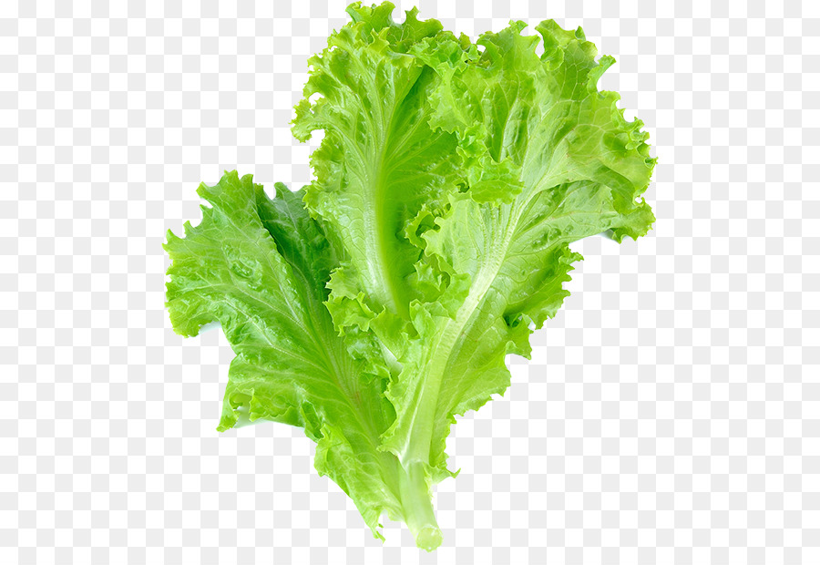 листик салата картинка желании юзеры