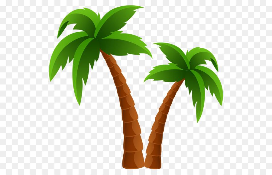 Картинки пальма для детей, прикольные новым