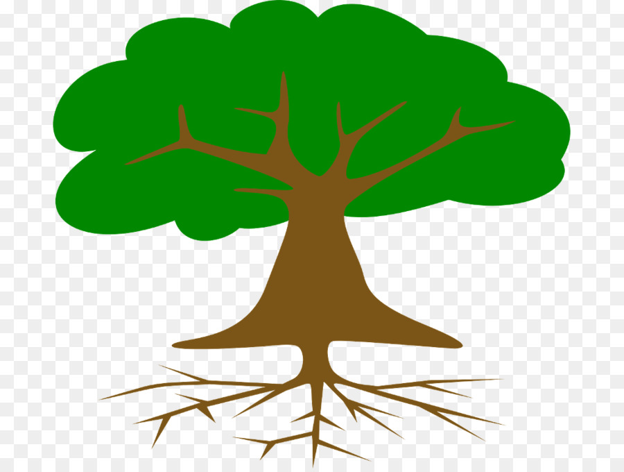 Картинка зеленое дерево с корнями