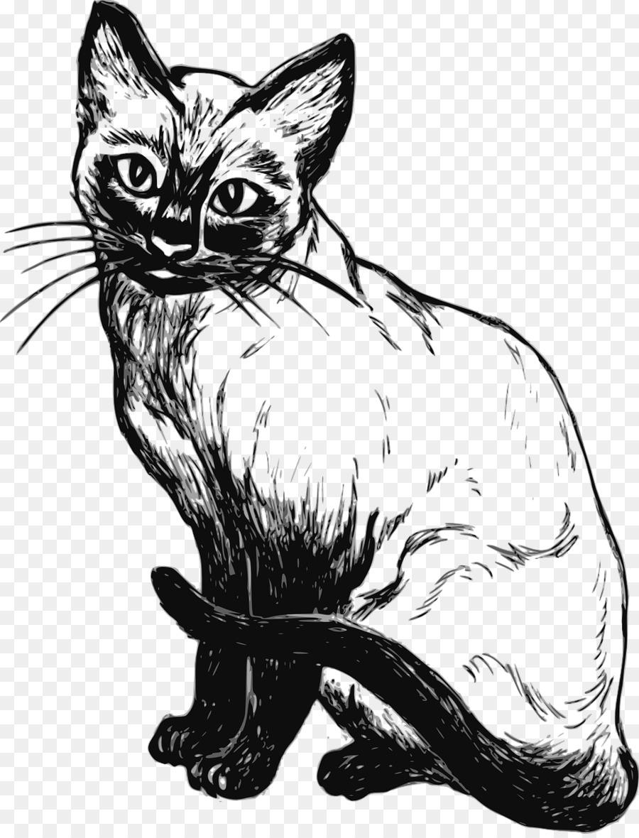 Печальки прикольные, белый кот картинки рисунки