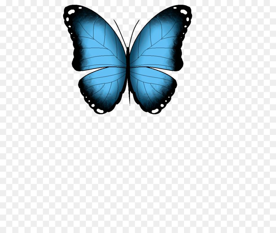 Картинки бабочки на прозрачном фоне анимация, хобби прикольные