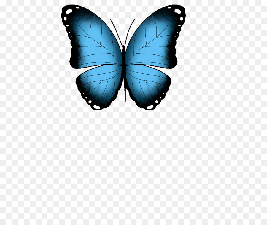 Анимашки картинки бабочки, много цветов