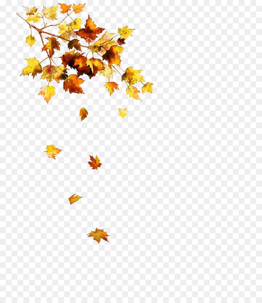 картинка для фона осень на прозрачном фоне куда поехать, если