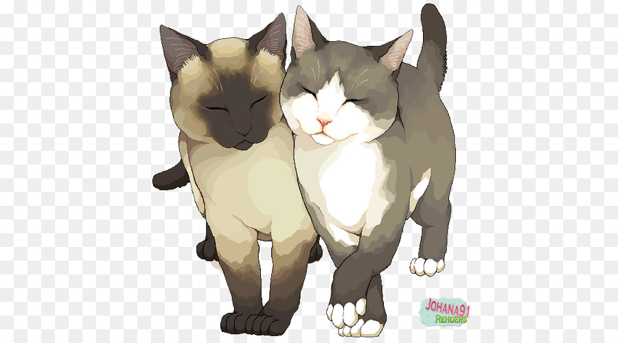 хотел картинки кошек мур любящие часто