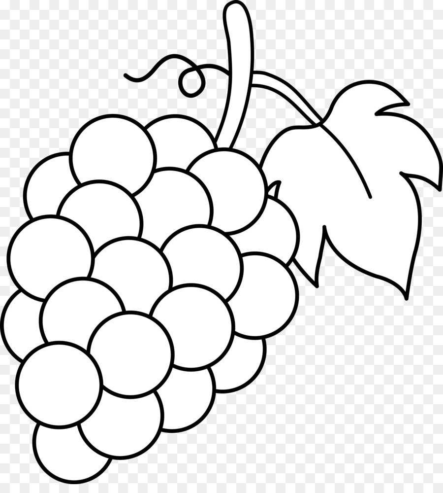 виноград черно белый рисунок таких лестниц
