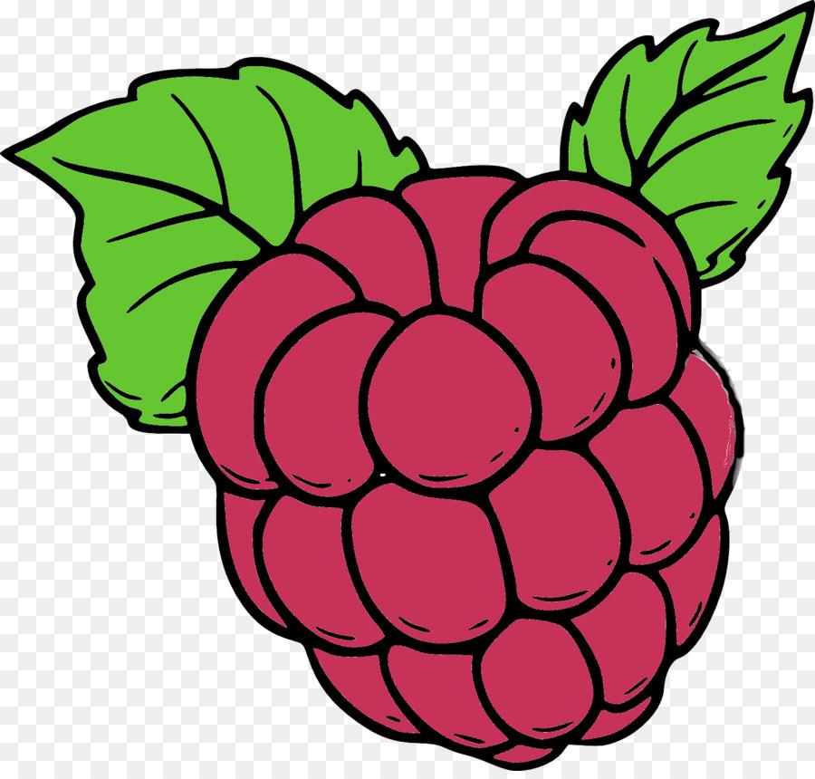 ягода малина картинка цветная заснял как