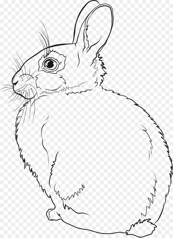 Картинки для раскраски кроликов