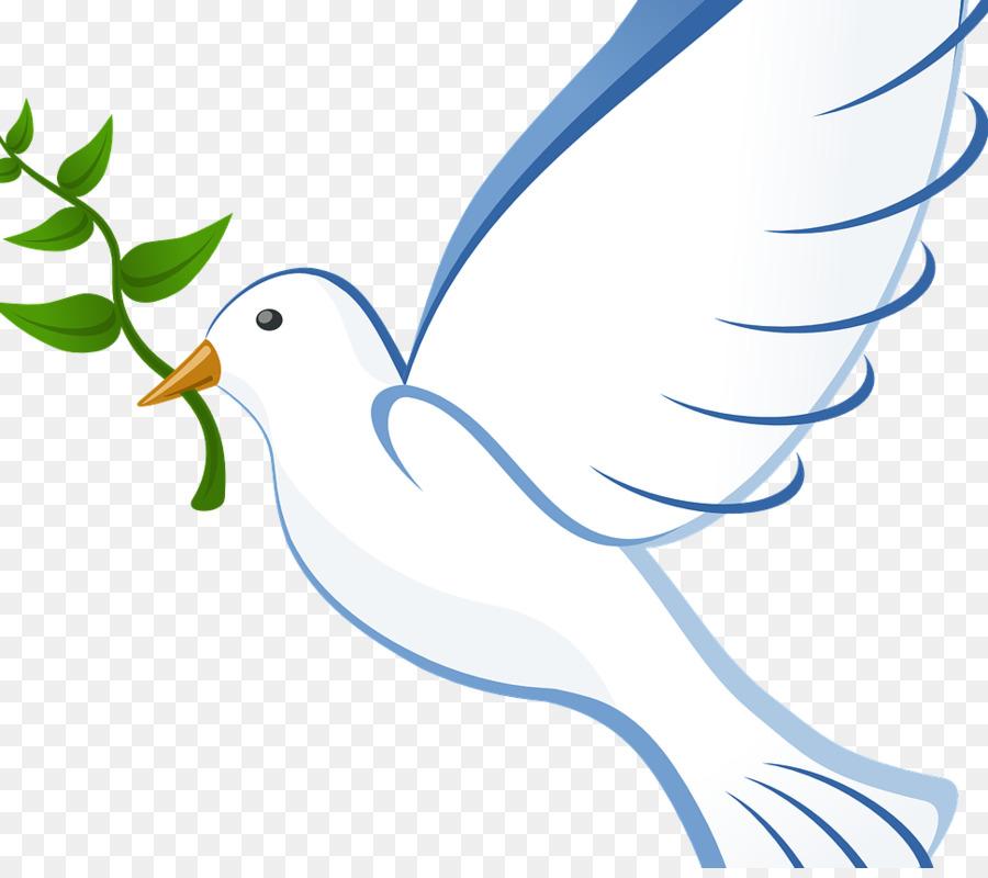 Картинка голубь мира для детей на прозрачном фоне